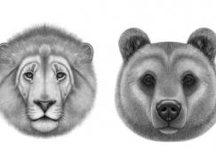 Charlotte Quillet逼真的动物肖像画作品