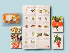 Ocati水果品牌和包装设计