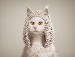 Post Production:精美的动物图片合成广告作品