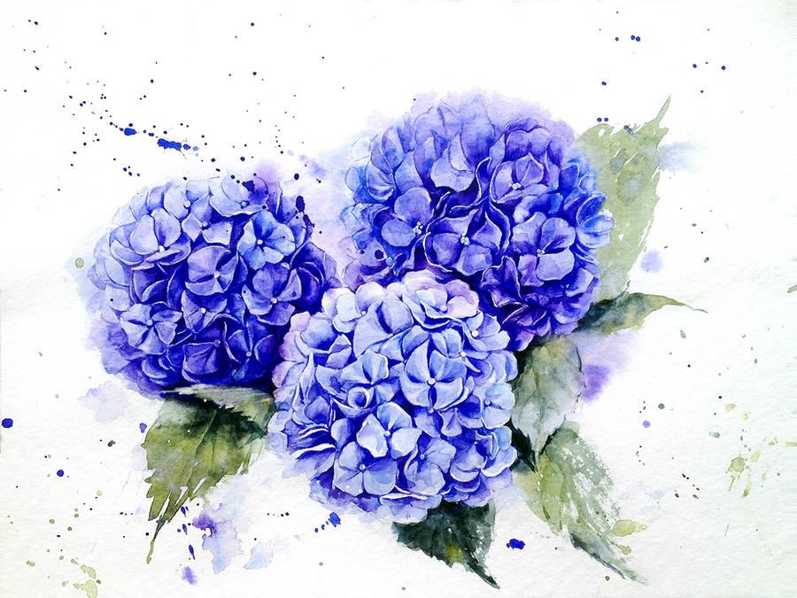 elena moroz花卉水彩画欣赏