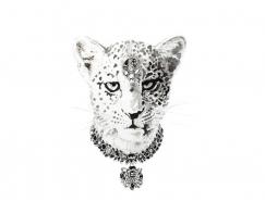 戴上珠宝饰品的动物:Natalia Bivol动物肖像插画
