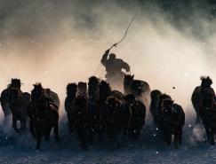 National Geographic 2016年摄影大赛获奖作品赏析