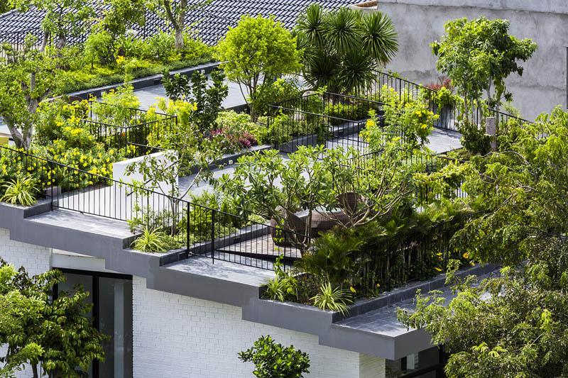 的屋顶花园住宅