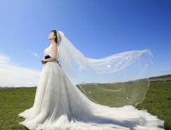 利用PS钢笔及通道保细节抠出透明婚纱