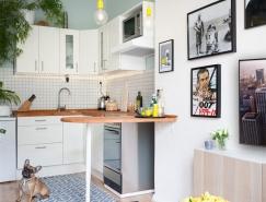布拉格45平方米小公寓装修设计