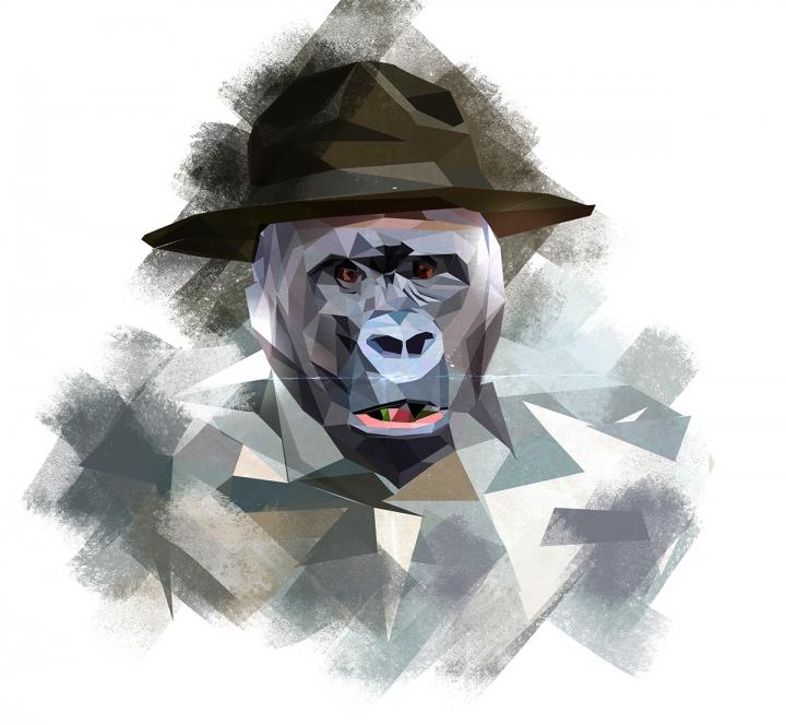 ira chet几何图形构成的动物插画图片