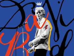 Selman Hosgör:纪念摇滚音乐家David Bowie海报
