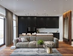 质朴简约的现代公寓设计
