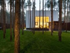 基輔鬆樹林中的CUBE別墅設計
