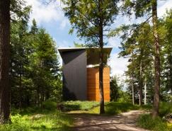 雕塑家宁静温馨的林中别墅