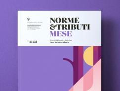 Norme & Tributi Mese封面插图设计