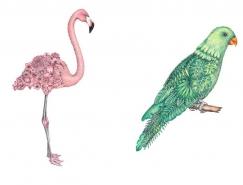 Chloé Mickham超现实风格手绘动物插画