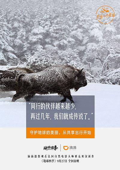 一次顾过瘾:滴滴广告海报大年夜大合集