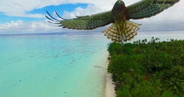 Dronestagram评出的2016年度最佳无人机航拍作品