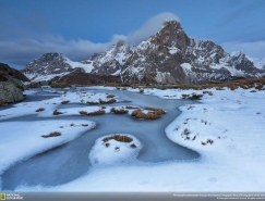 2016國家地理自然攝影大賽獲獎作品
