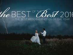 Junebug Weddings公布2016年最佳婚礼摄影作品