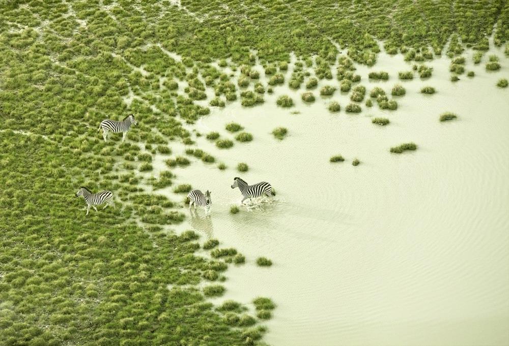 150米高空拍摄的博茨瓦纳神奇美景