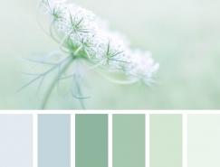来自大自然的配色哲学:小清新配色30例