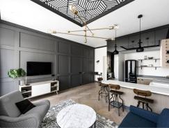 老房子改造的经典和现代风格的小公寓