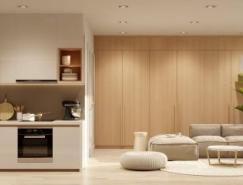 3個精致豪華的一居室小公寓設計