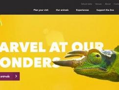 20個明亮多彩的網站設計欣