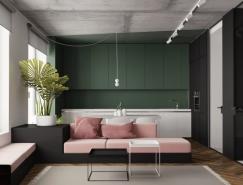 现代装饰风格的5个一居室小公寓设计