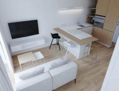 3个现代风格一居室小公寓设计