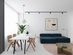 干净和经典的白色公寓空间设计