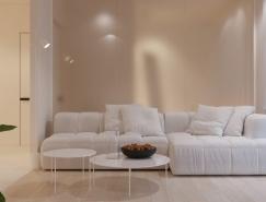 3个简洁自然的一居室公寓设计