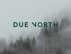 Due North品牌視覺形象設計