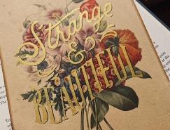 Travis Stewart精美手写字体设计