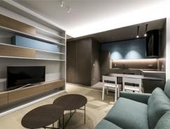 维尔纽斯现代风格40平米单身小公寓设计