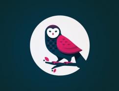40个精美的猫头鹰插画设计