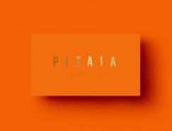 仙人掌和花盆銷售商:Pitaia品牌VI設計