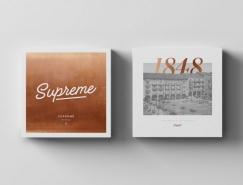 Supreme服装店品牌视觉形象设计