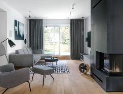 波兰优雅时尚的现代住宅,体育投注